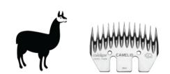 Heiniger Camelid