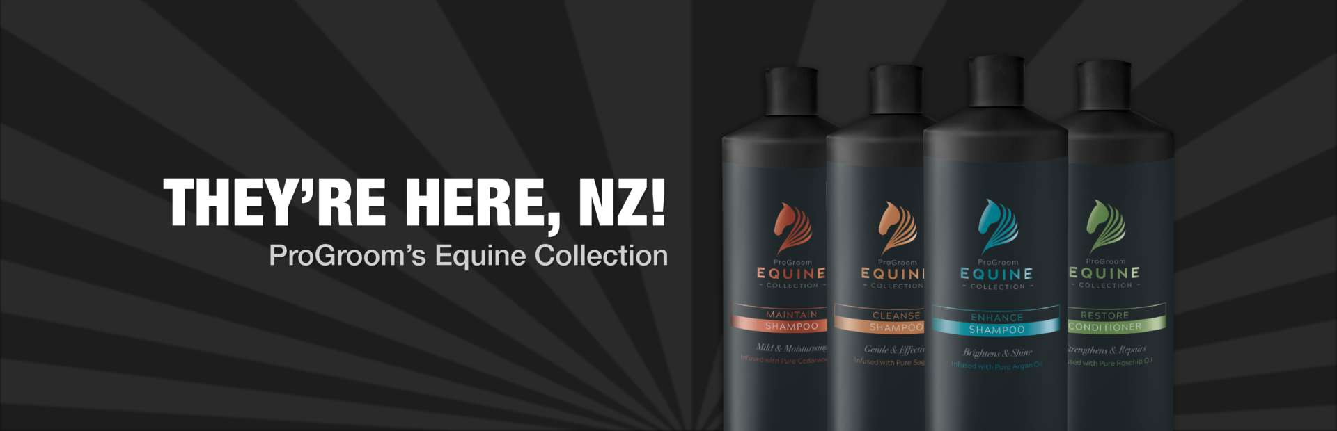 Hnz Equine Collection 21