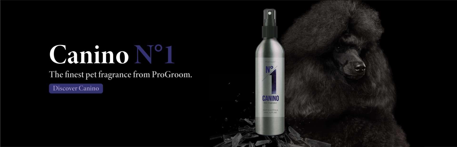 Canino No1 26