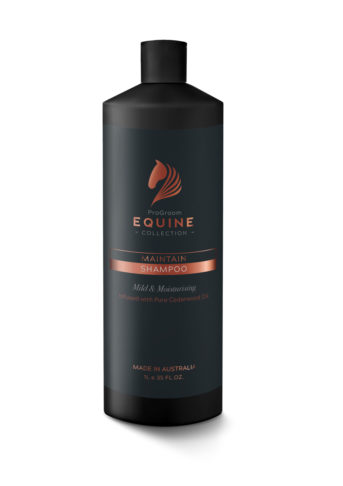 Equine Black 1 L Bottle Maintain Shampoo
